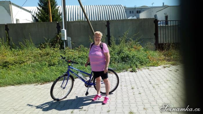 žena, 40 let, Teplice