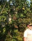muž, 53 let, Žďár nad Sázavou