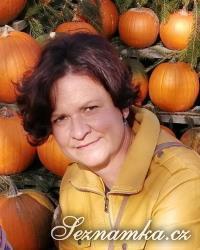žena, 40 let, Hlinsko