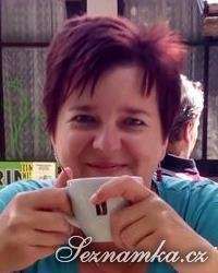 žena, 41 let, Brno